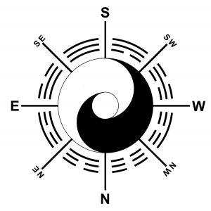 YINYANG-ra-angles-8directions-bw