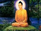 Thumbs Buddhaundertree2004B-midres